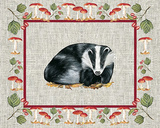 Nice Animals Badger