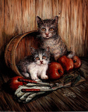 Two Cute Kittens (Apples)