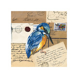 Birds Letters I