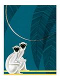 Two Monkeys Reproduction d'art par Frank Mcintosh