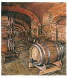 Wine Cellar no 2