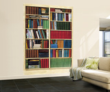 Bibliotheque Library Wall Mural