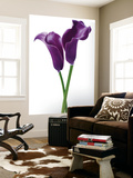 Innes Ivor Purple Callas Flower Mural