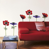 La Cocotte Anemones Wall Stickers