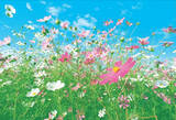 Flower Meadow Huge Wall Mural Art Print Poster