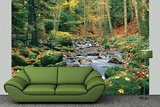 Forest Stream Huge Wall Mural Art Print Poster