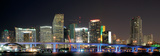 Downtown Miami Skyline at Night-Miami  Florida