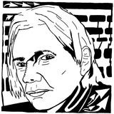Jullian Assange Wikileaks Founder Maze
