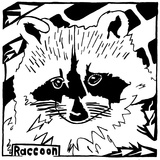 Learn to a Maze R is for Raccoon