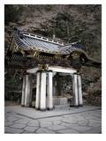 Nikko Architecture