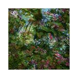 Vegetaux 22  2012