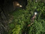 A jungle grows inside Hang Son Doong