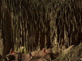 Cavers Stare at a Cascade of Fluted Limestone  Greened By Algae