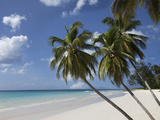 White Sand Beach  Bridgetown  Barbados  West Indies  Caribbean  Central America