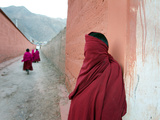 Young Tibetan Buddhist Monks at Labrang Monastery