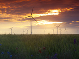 Wind Turbines at Sunset  Kavarna Wind Farm  Kavarna  Bulgaria  Europe
