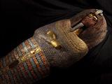The Coffin of King Tut's Father  Akhenaten  Found in Tomb KV55