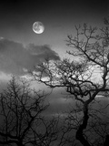 A Nearly Full Moon Sets over the Blue Ridge Mountains at Dawn Papier Photo par Amy & Al White & Petteway