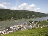 Assmannshausen  Rhine Valley  Hesse  Germany  Europe