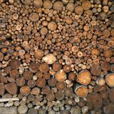 Wood Pile in the Walser Village of Grimentz  Valais  Swiss Alps  Switzerland  Europe