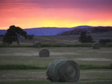 Landscape with Hay Bales at Sunset