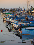 Line of Fishing Boats at Dusk in the Harbour  Sozopol  Black Sea  Bulgaria  Europe