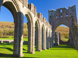 Llanthony Priory  Brecon Beacons  Wales  United Kingdom  Europe