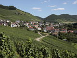 Village of Ockfen with Vineyards  Saar Valley  Rhineland-Palatinate  Germany  Europe