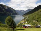 Aurlandsfjorden Near Flam  Sogn Og Fjordane  Norway  Scandinavia  Europe