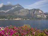 View of Lake Looking Towards Cadenabbia  Bellagio  Lake Como  Lombardy  Italian Lakes  Italy  Europ