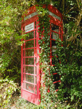 Overgrown Telephone Box  England  United Kingdom  Europe