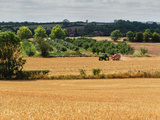 View across a Harvested Landscape  Warwickshire  England  United Kingdom  Europe