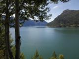 Lustrafjorden Near Dale  Sogn Og Fjordane  Norway  Scandinavia  Europe