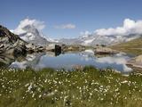 Lake Riffelsee and the Matterhorn  Zermatt  Valais  Swiss Alps  Switzerland  Europe
