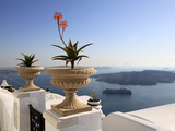 Firostefani  Santorini  Cyclades Islands  Greek Islands  Greece  Europe