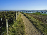 Salt Marsh and the Hampshire Coast  Hurst Spit  Keyhaven  Hampshire  England  United Kingdom  Europ