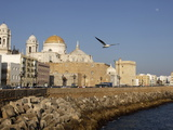 Cadiz Waterfront  Cadiz  Andalucia  Spain  Europe