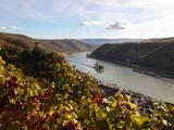 Gutenfels Castle and Pfalzgrafenstein Castle  Kaub  Rhine Valley  Rhineland-Palatinate  Germany  Eu