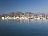 View across the Harbour Port D'Alcudia  Mallorca  Balearic Islands  Spain  Mediterranean  Europe