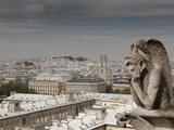 Gargoyle of Gothic Notre Dame Cathedral and the Right Bank with Basilica of Sacre Coeur  Paris  Fra