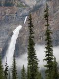 Takakkaw Falls  Yoho National Park  UNESCO World Heritage Site  British Columbia  Rocky Mountains