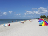 Captiva Island  Gulf Coast  Florida  United States of America  North America