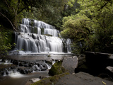 Purakaunui Falls  Southland  South Island  New Zealand  Pacific