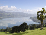 Otago Harbour  Otago Peninsula  Otago  South Island  New Zealand  Pacific