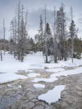 Fountain Paint Pot Winter Landscape  Yellowstone National Park  UNESCO World Heritage Site  Wyoming