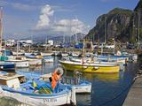 Fishing Boats in the Port of Marina Grande  Capri Island  Bay of Naples  Campania  Italy  Europe