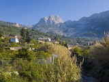 View Up Fertile Valley to Puig Major  the Island's Highest Peak  Soller  Mallorca  Balearic Islands