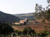 The Abbey of Sant'Antimo  Near Chianciano  Tuscany  Italy  Europe
