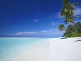 Tropical Beach and Lagoon  Maldives  Indian Ocean  Asia