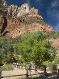 Zion National Park  Utah  United States of America  North America